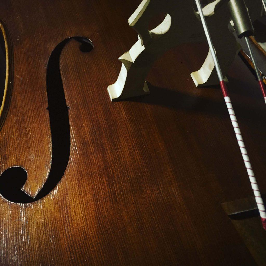 コントラバスの弦