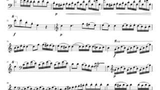 J.B.Vanhal – Concerto in D-dur