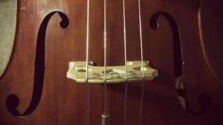 あなたの弦は大丈夫?コントラバスの弦の寿命が分かる3つのサイン